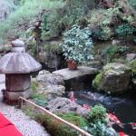 Teahouse Koi Garden