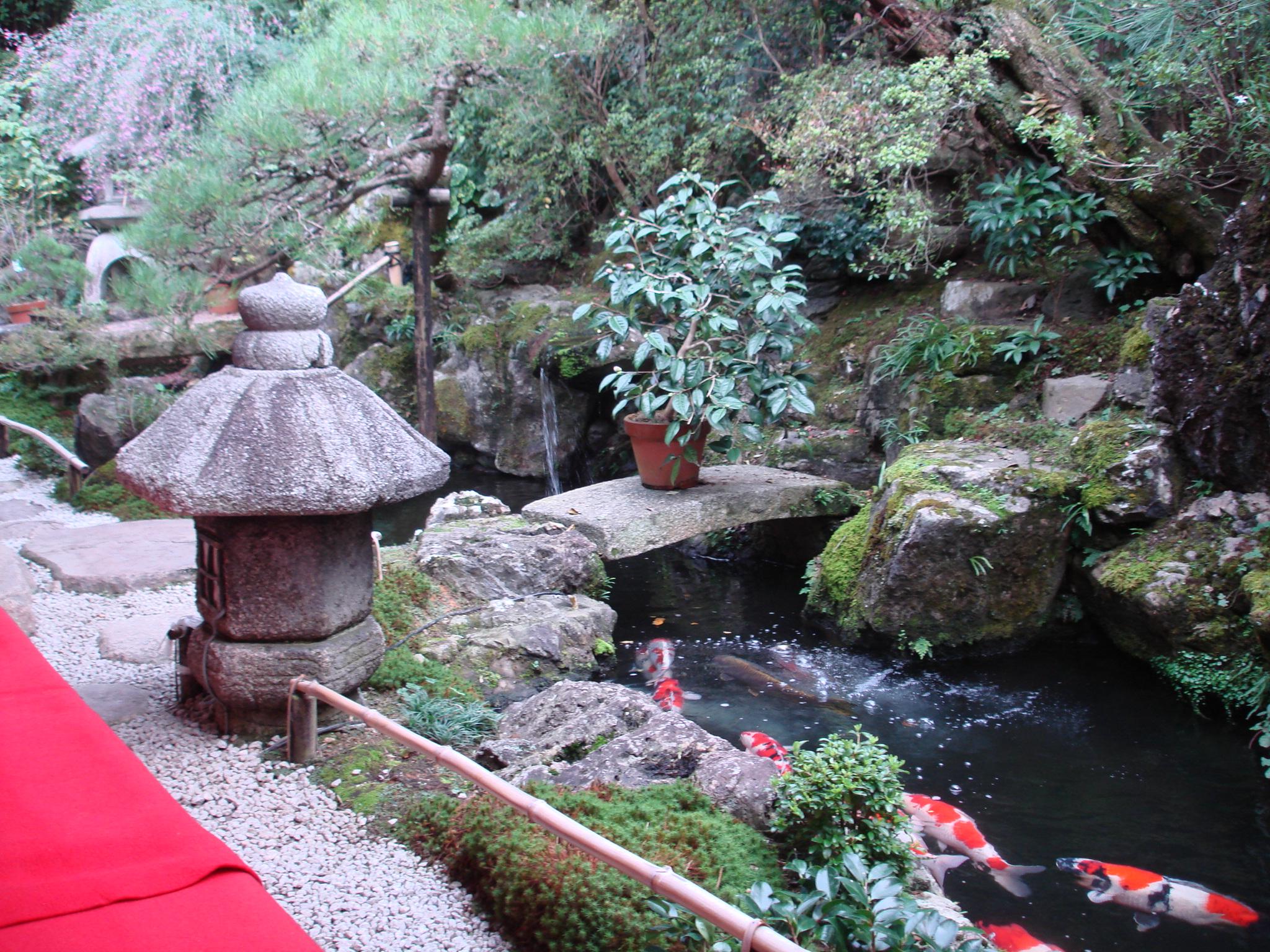 Koi garden garden ftempo for Koi garden sas