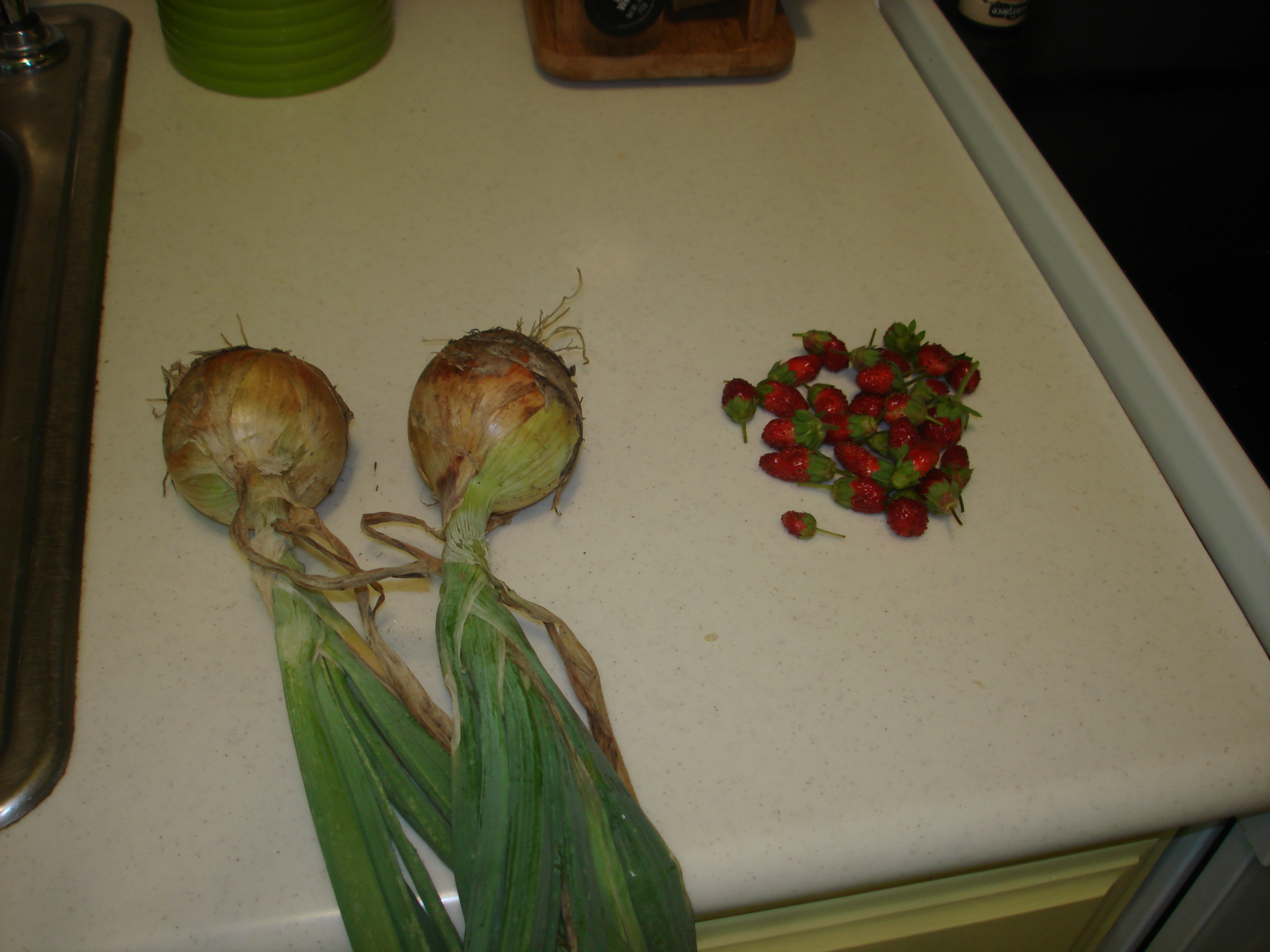 Two onions and a handful of strawberries
