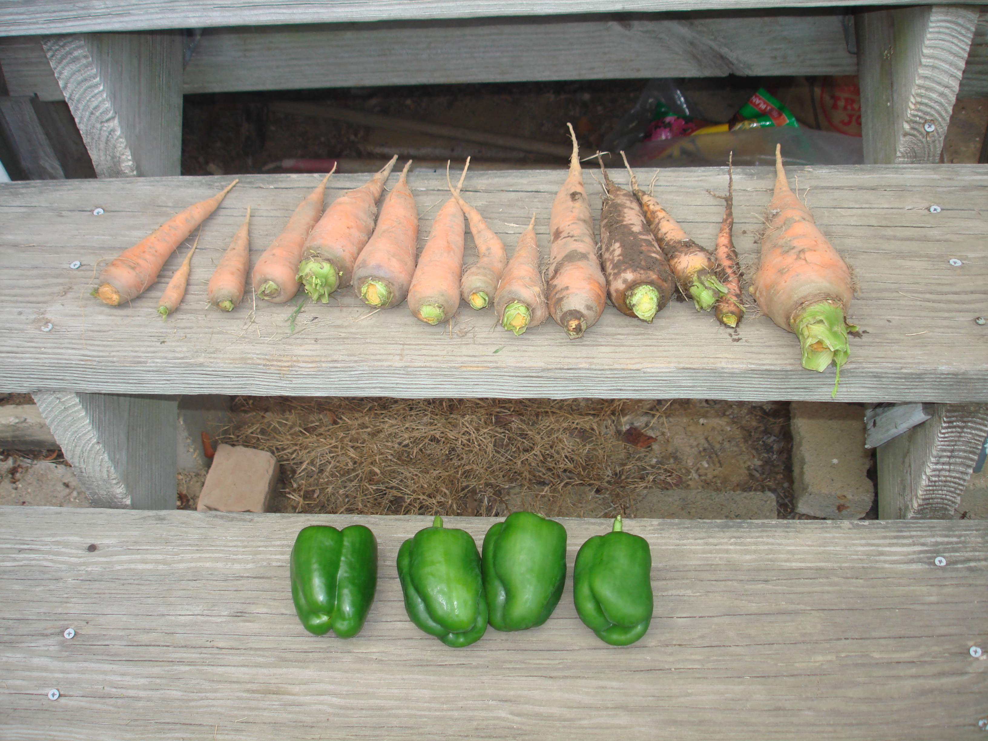 Carrots and green pepper