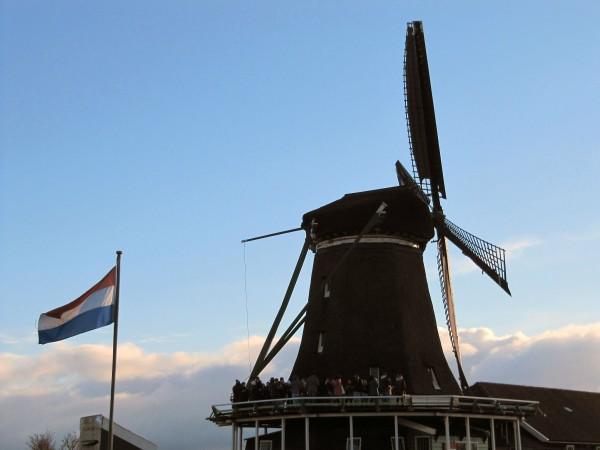 This particular mill is named 'Het Jonge Schaap' (The Young Sheep).